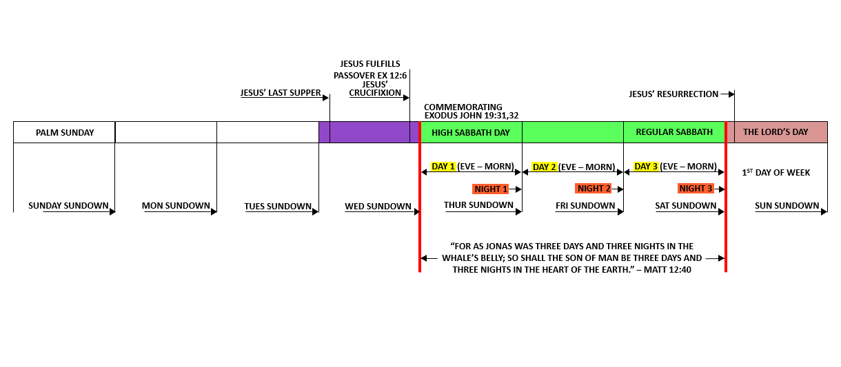 THE RAPTURE TIMELINE CHART